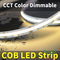 CCT Color Dimmable COB LED Strip