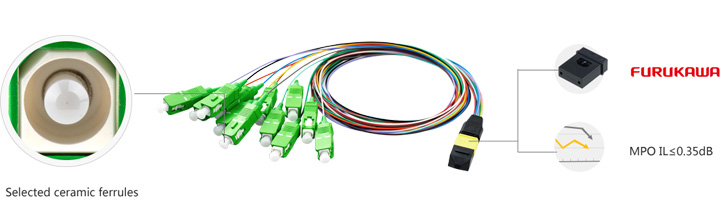 MPO/MTP Breakout Patch Cord