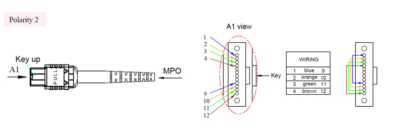 MPO/MTP Patch Cord