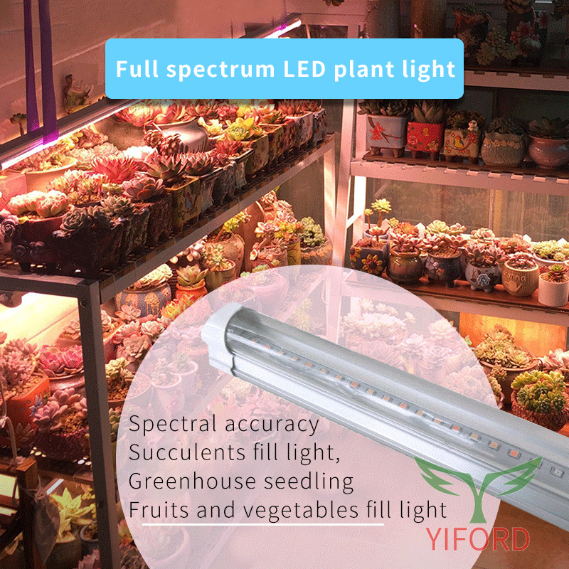 Lumière de remplissage d'usine à LED