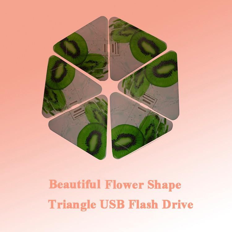 Low Price Triangle Plastic Business Card USB Flash Drive 2GB